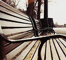 """park bench"" - Rideau river ottawa by Liamspero"