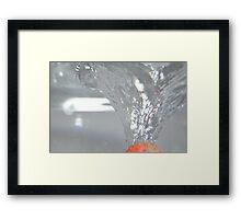 Strawberry pierce Framed Print