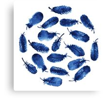 Set of blue feathers Canvas Print