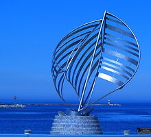 Sailing (View Large) by BarbL