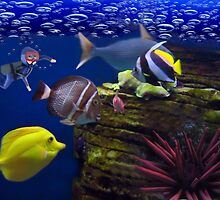 <º))))>< <º))))>< Diving Looking At Those Beautiful Fish<º))))>< <º))))><  by ╰⊰✿ℒᵒᶹᵉ Bonita✿⊱╮ Lalonde✿⊱╮