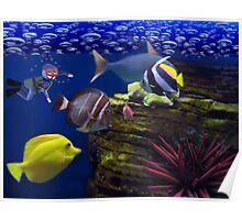 <º))))>< <º))))>< Diving Looking At Those Beautiful Fish<º))))>< <º))))><  Poster
