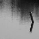 Zen by Stephen  Van Tuyl