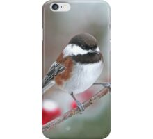 Chickadee and Red Berries in Winter iPhone Case/Skin
