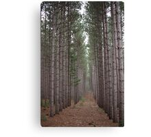 Towering Beauty Canvas Print