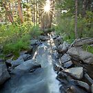 Golden Trout Creek by Nolan Nitschke