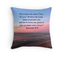 BREATHTAKING JEREMIAH 29:11 PHOTO Throw Pillow
