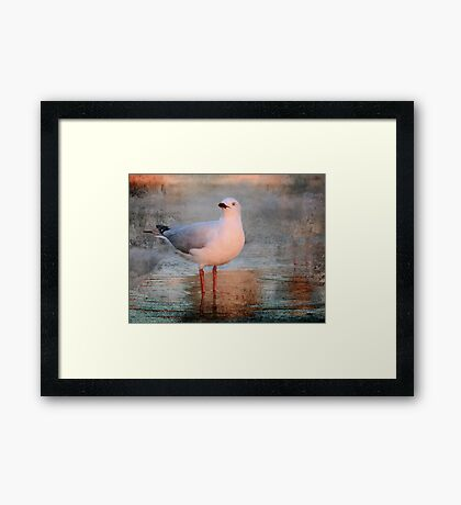 What the......!! Framed Print