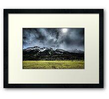 Summer Snowstorm Framed Print