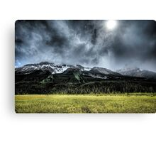 Summer Snowstorm Canvas Print