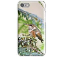 Baby Hummingbird Sticking Out Its Tongue iPhone Case/Skin