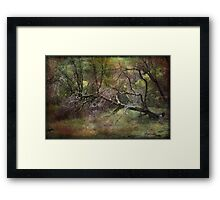 Falling Is The Easy Part Framed Print