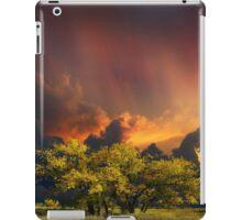 4007 iPad Case/Skin
