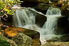 Waterfall on the Roaring Fork Nature Trail by Joe Elliott