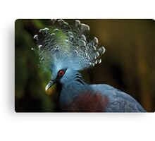 Victoria Crowned Pigeon Canvas Print