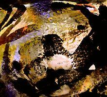 dark horse dream by banrai