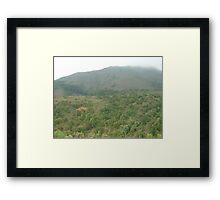 scrubby green trees marching towards mountain top Framed Print
