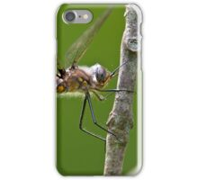 Beaver Pond Basket-tail Dragonfly iPhone Case/Skin