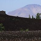 Cinder Cones - Craters of The Moon National Monument, Butte County, ID by Rebel Kreklow