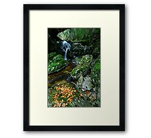 Streaming into the Dove Framed Print