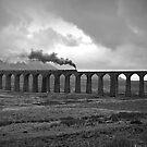 Ribblehead Viaduct by Stephen Liptrot