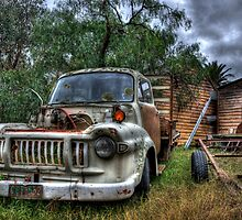 rust bucket by Leigh Monk