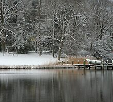 Winter at Water #1 by Eileen McVey
