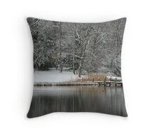 Winter at Water #1 Throw Pillow