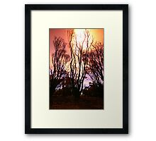 After The Fires II Framed Print