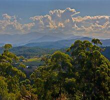 Landscape by Rodney Wratten