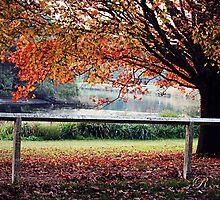 Tree in Centennial Park by fRantasy