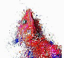 Lizard by bassesafari