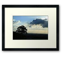 """""""Tree In the Storm Framed Print"""