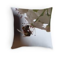 Oh Bee-have (for zpawpaw) Throw Pillow