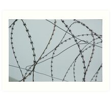 Wire at Robben Island (Color) Art Print