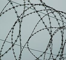 Wire at Robben Island #2 (Color) by idubrawsky