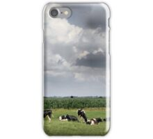 Dutch Landscape iPhone Case/Skin