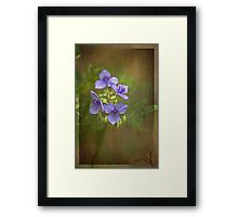 Beauty and Fun Framed Print