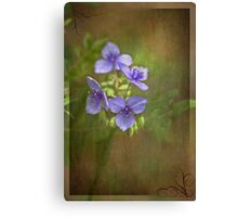 Beauty and Fun Canvas Print