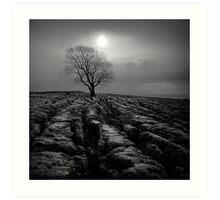 Malham Tree 01 - Yorkshire Dales, UK Art Print