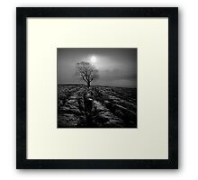 Malham Tree 01 - Yorkshire Dales, UK Framed Print