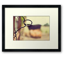 Cows are amongst the gentlest of breathing creatures Framed Print