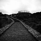 The Path To Pricelessness by Chris Paddick