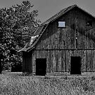 Blue Eyed Barn by Sheryl Gerhard
