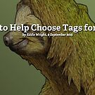 Ask Your Fans to Help Choose Tags for Your Artwork by Redbubble Community  Team