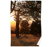 Sunset on the San Francisco Mountain Peaks. Poster