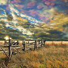 The fence by Jeff Burgess