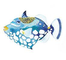 Trigger Clown Fish, customized by RagAragno