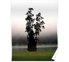 Tree in the mist Poster