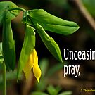 Unceasingly Pray ~ 1 Thessalonians 5:17  by Robin Clifton
